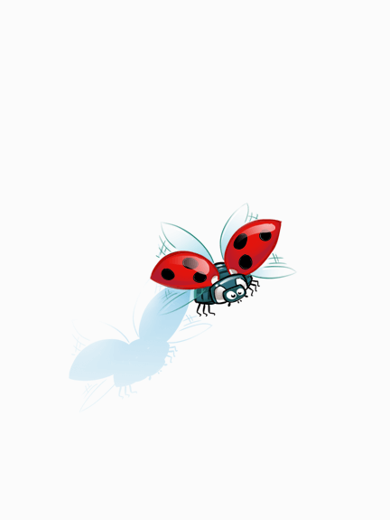 illustration de coccinelle